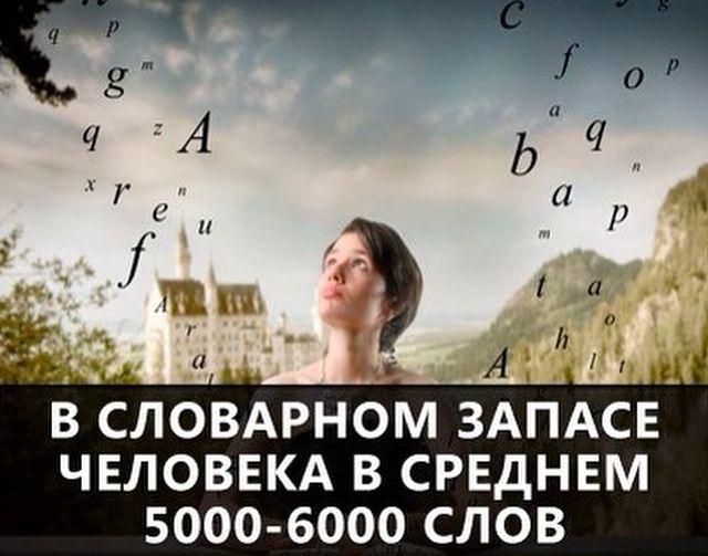 44 (640x503, 109Kb)