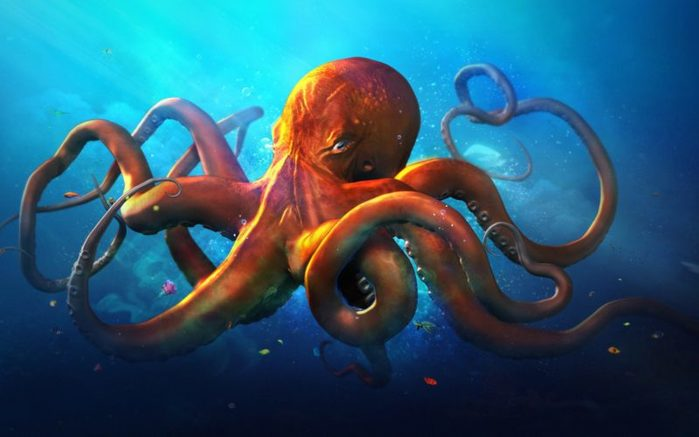 octopus-digital-art-wallpaper-15618-16126-hd-wallpapers-e1517052446168 (700x437, 39Kb)