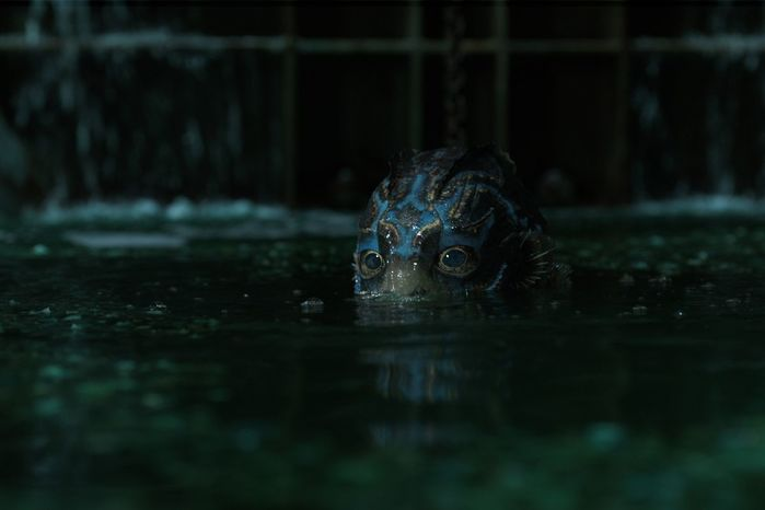shapeofwater_crop.0 (700x466, 22Kb)