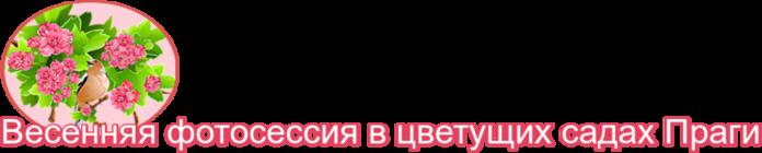 cSlu1cMJBK5z (700x140, 70Kb)