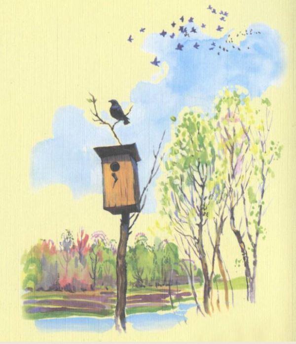 Картинки птицы прилетели для детей