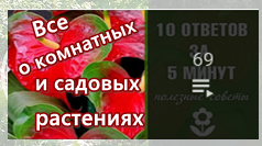 5 (238x133, 73Kb)
