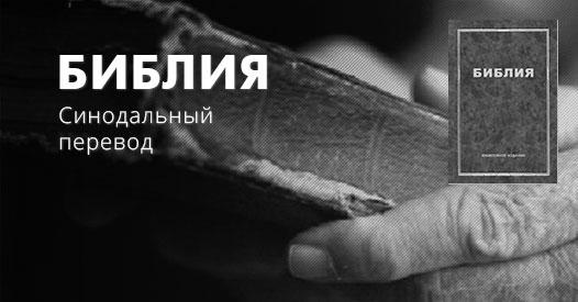 библия fсинрюодальный перевод b2