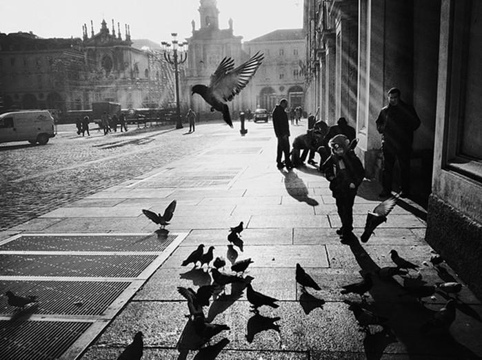 142335493 060818 1311 21 Гениальные фотографии талантливых уличных фотографов