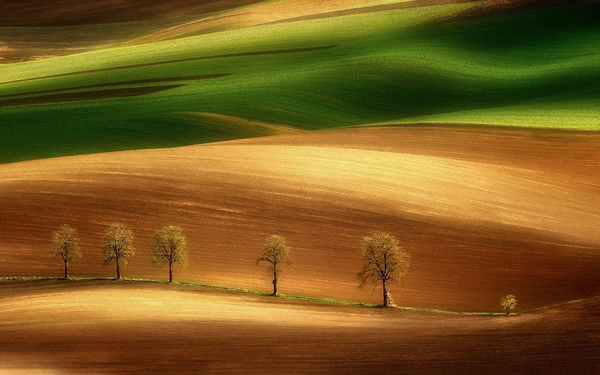 best_landscape_photographers_17 (600x375, 216Kb)