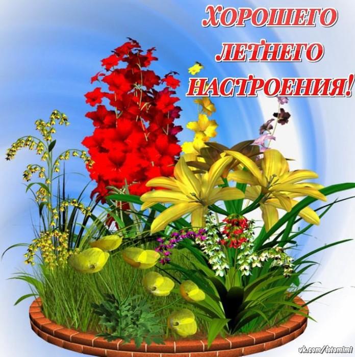 плакаты картинки хорошего летнего настроения падения курса рубля