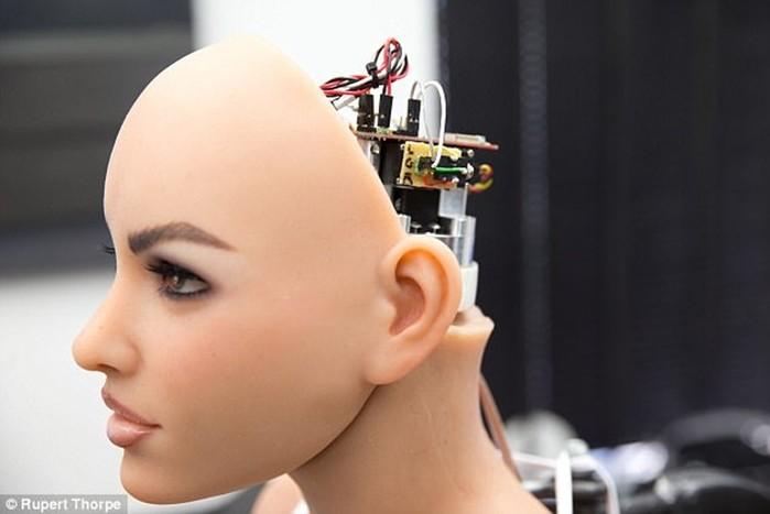 Говорящий секс робот больше не странная фантазия, а тревожная реальность