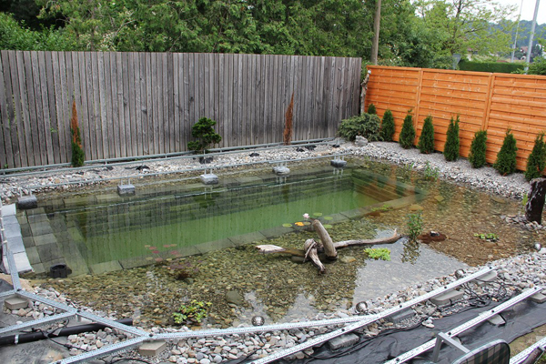 Ingenious-Backyard-Landscaping-Design-DIY-Project-Swimming-Pond-Homesthetics-17 (600x400, 361Kb)