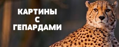 алмазная вышивка гепарды
