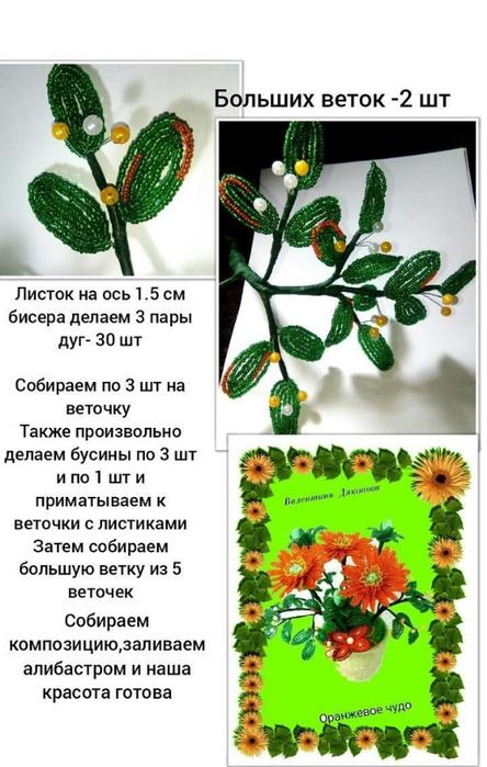 Композиции 143816547_3