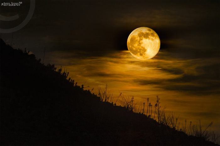 104214554_caught_me_a_super_moon_by_explicitstudiosd6ajdlz (640x400, 220Kb)