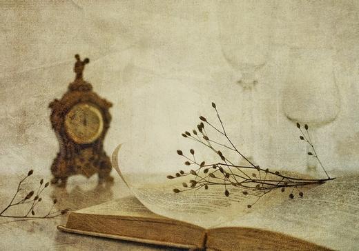 book-stilllife-29122012-14 (520x364, 151Kb)