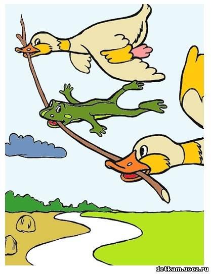 Картинки про, лягушка путешественница открытка