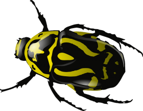 bug_PNG4004 (280x217, 38Kb)