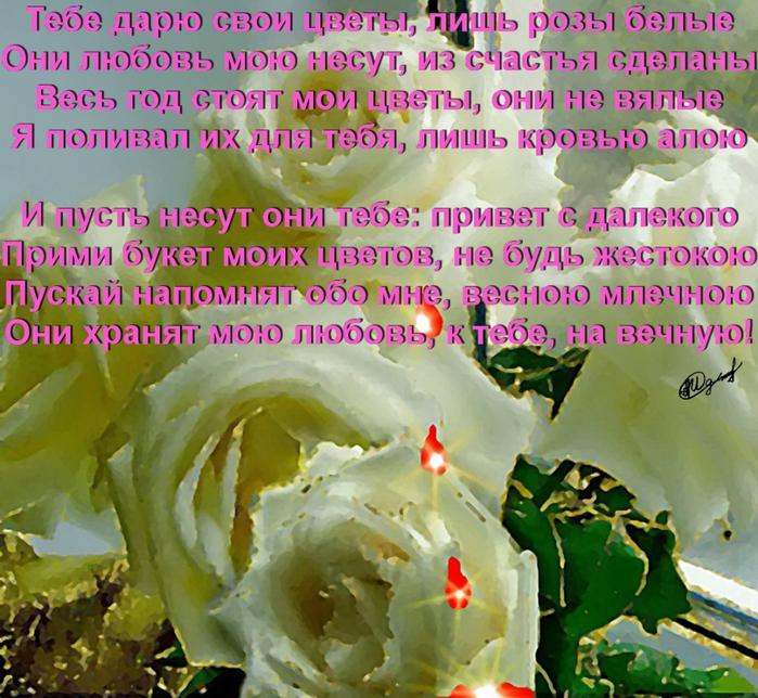 Арабис фото цветы