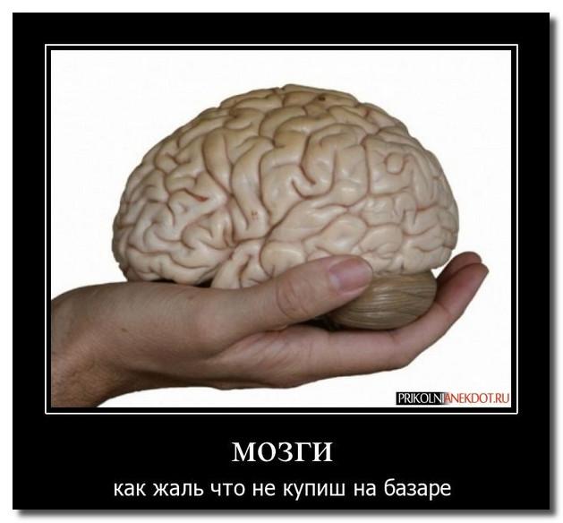 Дню, прикольные картинки с надписями про мозг
