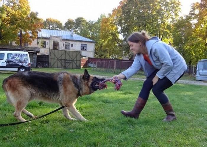 Джонатан, собака, которая охраняла жизни четырёх латвийских президентов