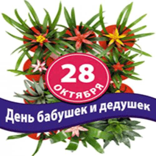 Розы анимация, с днем бабушек и дедушек россии открытки