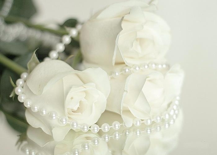 Жемчуг и белая роза фото анимации