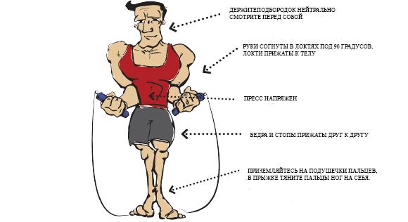 Скакалка Для Похудения Мужчины. Сжигаем жир на скакалке: программа тренировок
