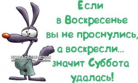 5672049_1391023516_frazochki11 (450x272, 25Kb)