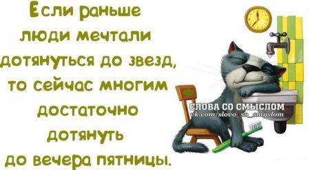 5672049_1391023610_frazochki12 (450x248, 26Kb)