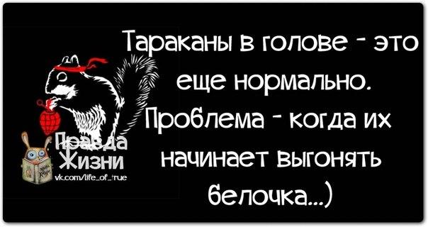 5672049_1391023704_frazochki17 (604x320, 39Kb)