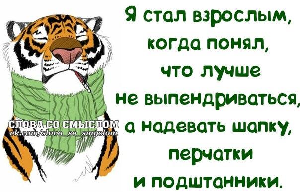 5672049_1391023712_frazochki27 (604x387, 65Kb)
