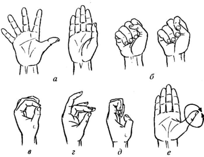упражнения на кисти рук в картинках больших размеров