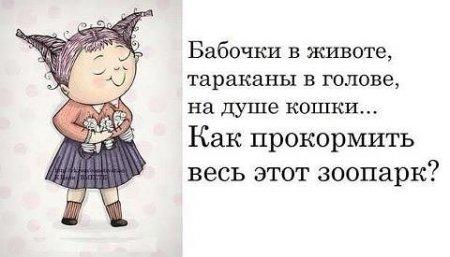 5672049_1366572336_frazochki1 (450x257, 26Kb)