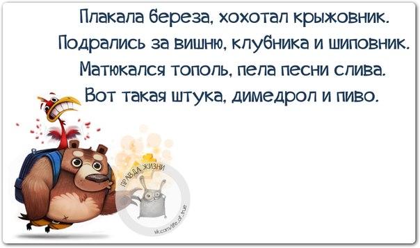5672049_1424638872_frazki8 (604x357, 42Kb)