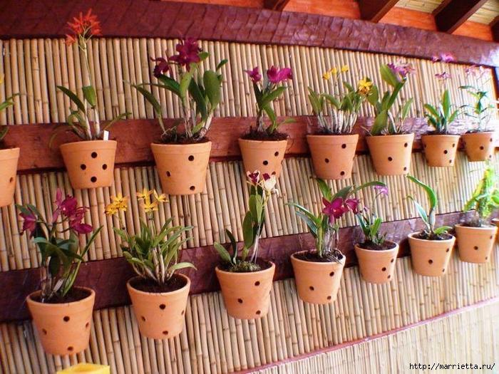 Вертикальные сады (6) (700x525, 354Kb)