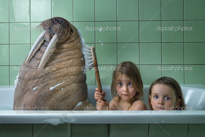 depositphotos_84607910-stock-photo-little-sisters-washing-walrus-in (700x467, 310Kb)