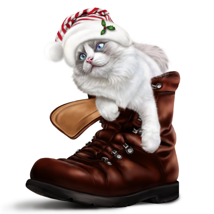 6090083_puss_in_a_boot (700x700, 342Kb)