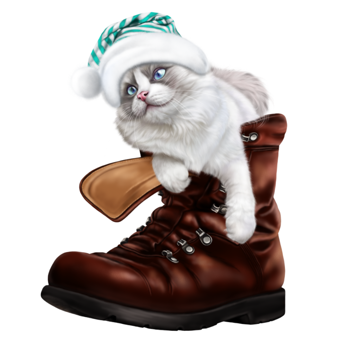 6090083_puss_in_a_boot_6 (700x700, 331Kb)