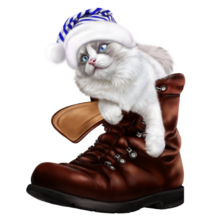 6090083_puss_in_a_boot3 (700x700, 332Kb)