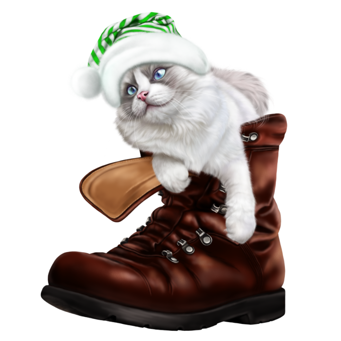 6090083_puss_in_a_boot6 (700x700, 332Kb)
