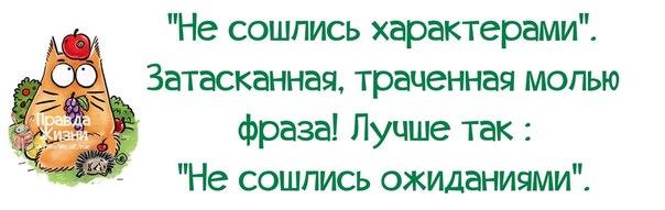 5672049_1394479123_frazochki8 (604x191, 28Kb)