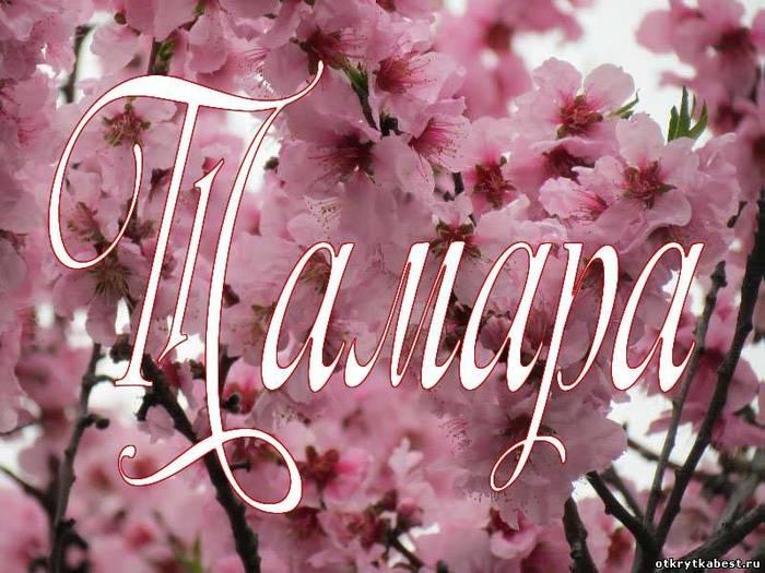 картинки с именем тамара тома процессе придумывания дизайна