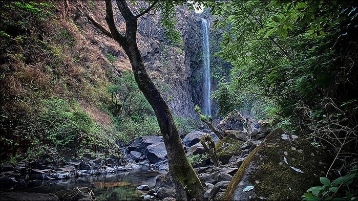 Водопад в дзуглях Западных Гат. Индия/3673959_2 (700x393, 194Kb)