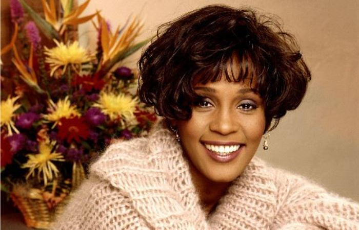 Whitney-Houston-1 (700x450, 53Kb)