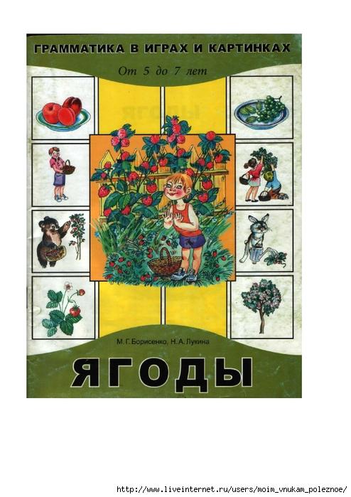 Borisenko_M_G_Lukina_N_A_Yagody_grammatika_v_igrakh_i_kartinkakh_pdf_000 (494x700, 229Kb)