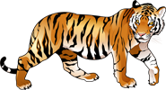 collection-of-free-agamist-clipart-tiger-download-on-ubisafe-inside-tiger-clipart (185x100, 31Kb)