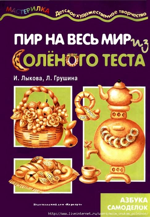 Masterilka_Iz_solenogo_testa_1 (486x700, 286Kb)