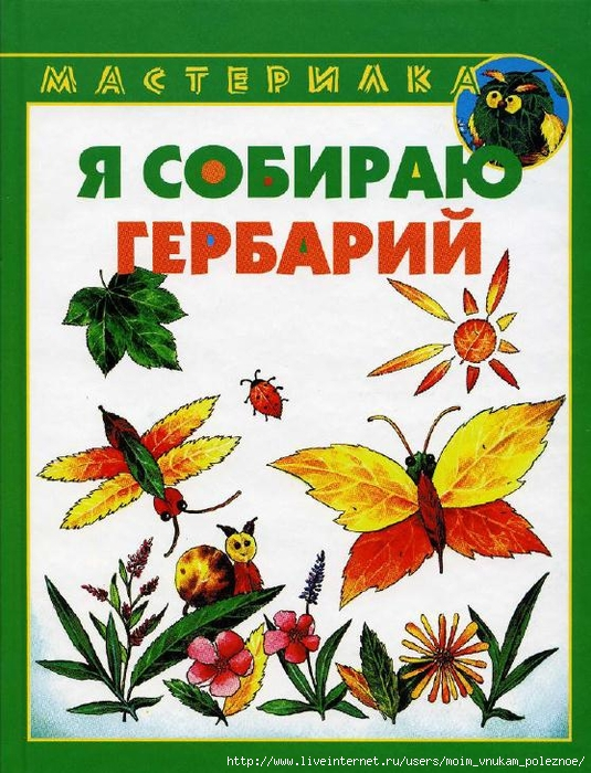Masterilka_-_ya_sobirayu_gerbariy_1 (535x700, 343Kb)