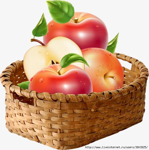 pngtree-a-basket-of-apples-png-clipart_2519110 (587x592, 210Kb)