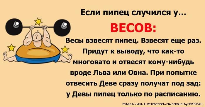 https://img1.liveinternet.ru/images/attach/d/2/146/973/146973633_7116.jpg