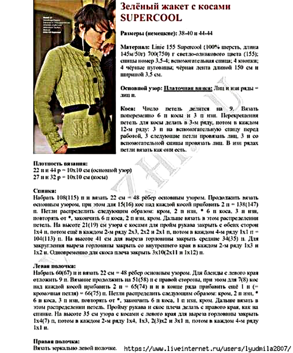 6018114_fistashkovii_jaket2 (581x700, 447Kb)