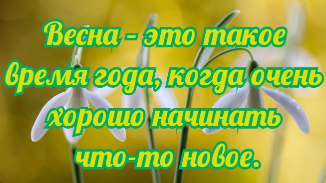 quotes_about_spring_2.jpg.pagespeed.ce.LmfehycaOy (653x367, 47Kb)