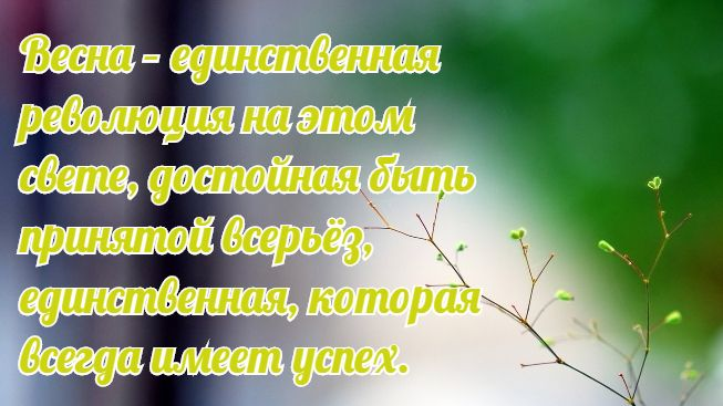 quotes_about_spring_8.jpg.pagespeed.ce.XhYETOVV2b (653x367, 45Kb)